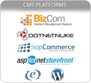 Content Management System Platforms
